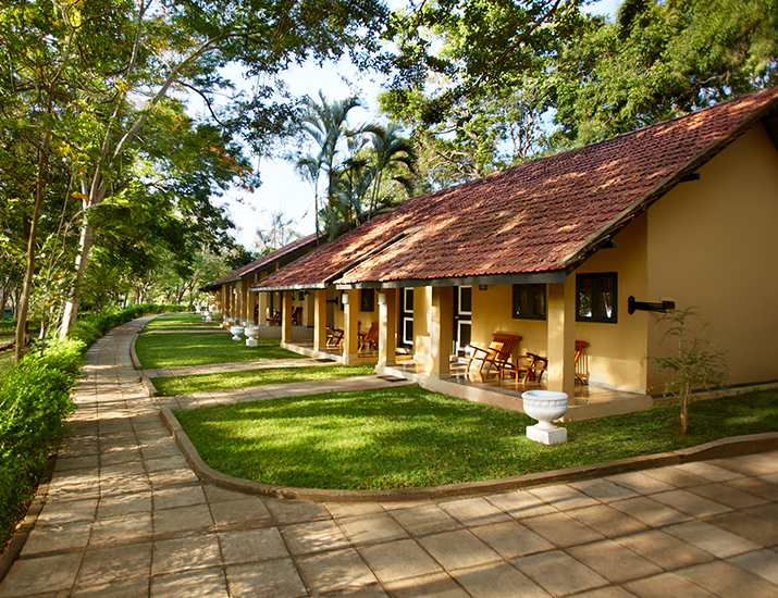 Sri Lanka Hotels | Cinnamon Hotels & Resorts Official Site