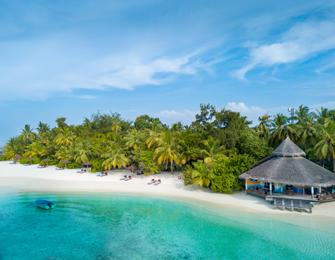 meer foto's redelijk geprijsd verenigde staten Maldives Beach Resort | Ellaidhoo Maldives by Cinnamon ...